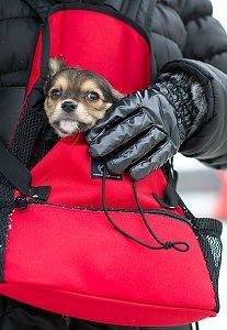 Hund vor Wetter geschützt
